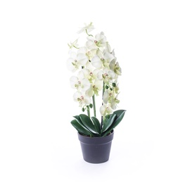 SN Artificial Orchid Flower Pot BDC18102 61cm