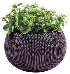 Curver Flower Pot Cozy S 229534 Dark Violet