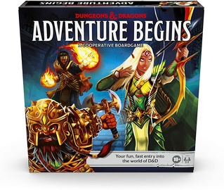 D&D Dungeons and Dragons Adventure Begins