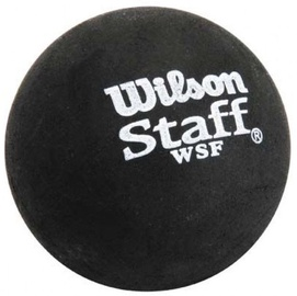 Wilson Squash Balls Staff Premium