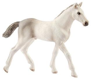 Rotaļlietu figūriņa Schleich Horse Club Holsteiner Foal 13860