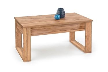 Kafijas galdiņš Halmar Nea Wotan Oak, 1100x600x520 mm