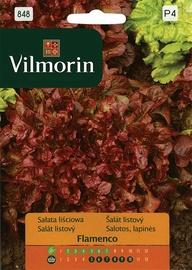 Salātu sēklas Vilmorin Flamenco
