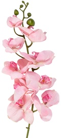 Home4you Decorative Branch Orchid H107cm Rose