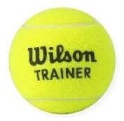 Tennisepall Wilson Trainer, roheline