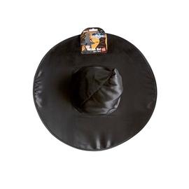 Aksesuaras Raganos kepurė helovynui 447