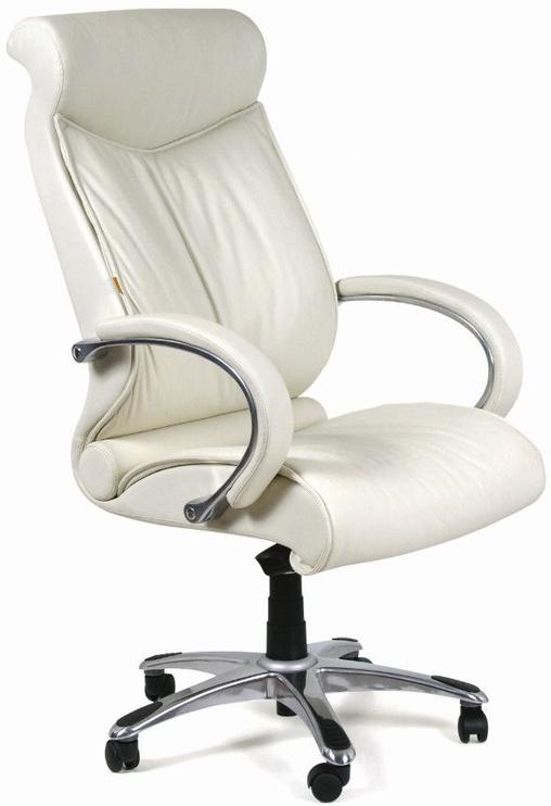 Chairman Executive 420 White