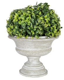 Home4you Artificial Green Bush In Buxus Pot H22cm
