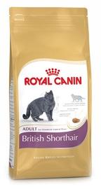 Sausas ėdalas katėms Royal Canin British Shorthair Adult, 2 Kg