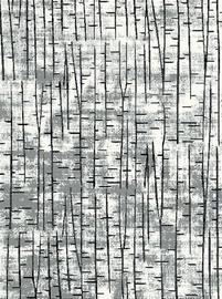 Paklājs Mutas Carpet 1139a_l5352, daudzkrāsains, 300x200 cm