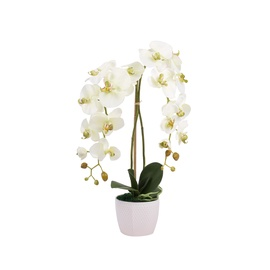 Dirbtinė orchidėja vazone, 60 cm