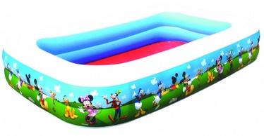 Bestway Family Pool  91008