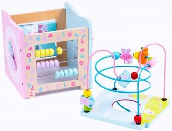 Izglītojošās rotaļlietas Malowany Las MSN, 2 gab.