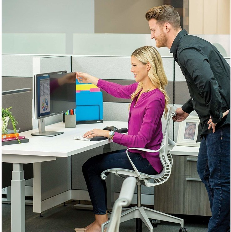 """Fellowes PrivaScreen Privacy Filter 21.5"""" Widescreen"""