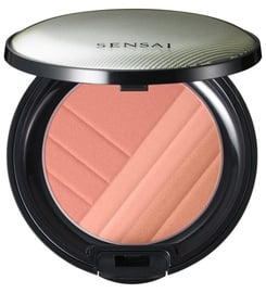 Sensai Cheek Blush 4g 01