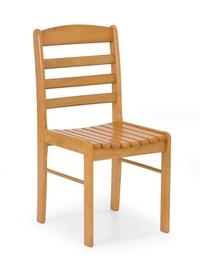 Svetainės medinė kėdė BRUCE