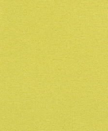 Viniliniai tapetai Rasch Cato  800647
