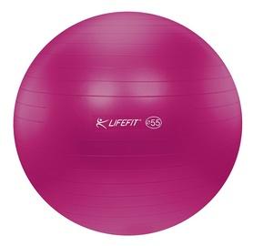 Gimnastikos kamuolys 55cm bordo