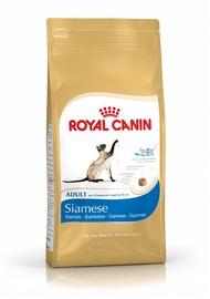Sausas ėdalas katėms Royal Canin Siamese Adult, su paukštiena, 2 kg