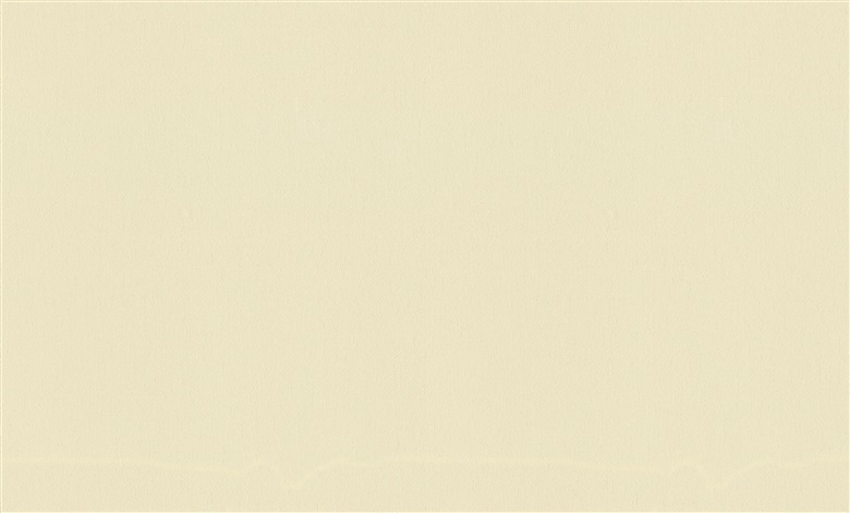 Flizelino tapetai, Rasch, 954357, MAximum XIV, gelsvi, vienspalviai