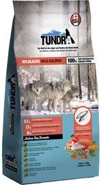 Tundra Dry Food Salmon 11.34kg