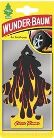 Lõhnakuusk Citrus Flames Wunder-Baum