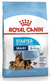 Royal Canin SHN Maxi Starter 15kg
