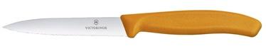 Victorinox Swiss Classic Serrated Paring Knife 10cm Orange
