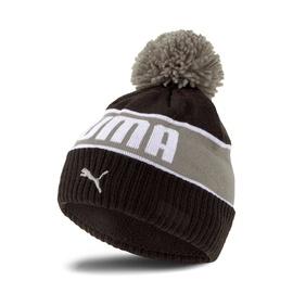 Cepure puma beanie 2283301