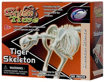 Eastcolight Tiger Skeleton 28008/28203