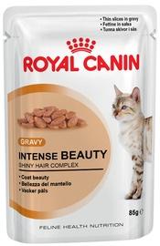 Royal Canin FHN Intense Beauty Wet 85g 12pcs