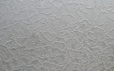 Akriliniai tapetai B77.4, 356-01