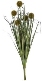 Искусственный цветок Home4you Bouquet Herbarium 5pcs In Garden H59cm Dark Green 83854