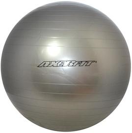 Axer Sport Standard Gym Ball 65cm Silver