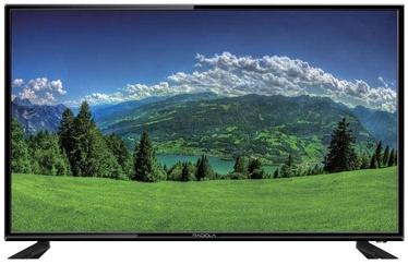 Televizorius Radiola LD32-RDL03F