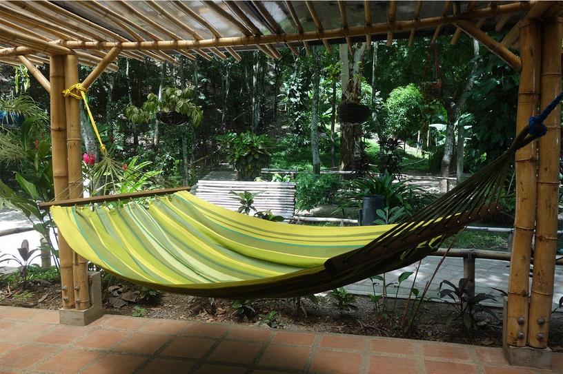 Home4you Iguana Handmade Hammock Green