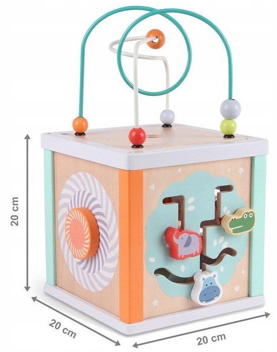 EcoToys Wooden Educational Cube Sorter
