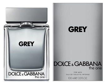 Tualetes ūdens Dolce & Gabbana The One Grey, 100 ml EDT