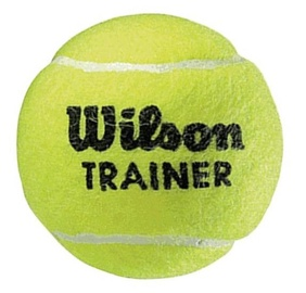 Wilson Trainer Ball WRT131100