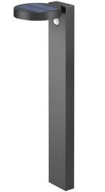 Trio Posadas antracīta stabiņš / LED gaismeklis 60 cm augsts, IP44, 4.5W, 290lm, 3000K ar saules baterijām un kustības sensoru