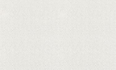 Dažomieji viniliniai tapetai 119213