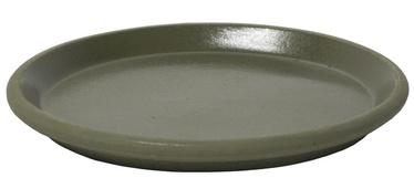Home4you SIAM Saucer 30cm Olive