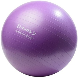 HMS Gym Ball YB02 65cm Purple