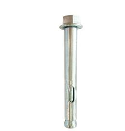 Ķīļenkurs ar uzgriezni, 14 x 100 mm, 1gb