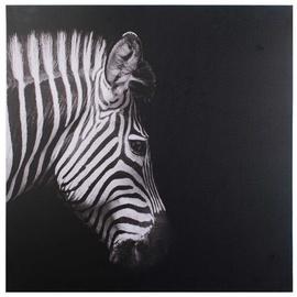 Mondex Zebra Painting 70x70x1.8cm