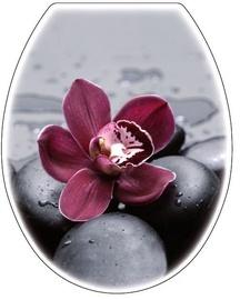 Karo-Plast Toilet Seat UNI Black Orchidea