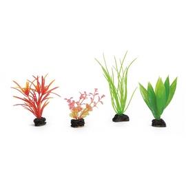 Akvariumo augalai Beeztees, 4 rūšys, 3,5 x 17,5 x 15,5 cm