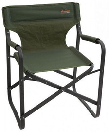 Pinguin Director Chair Green