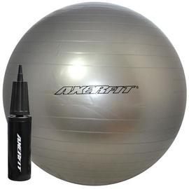 Axer Sport Standard Gym Ball 65cm Silver + Pump