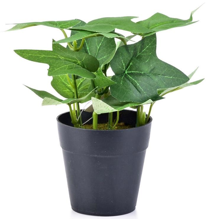 Искусственный цветок Mondex Artificial Flower In Pot Green 15cm
